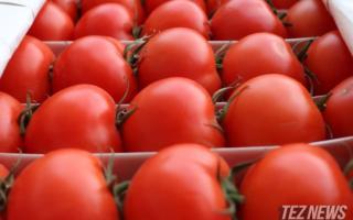 Россия Ўзбекистондан помидор олиб киришга қўйилган тақиқни юмшатди