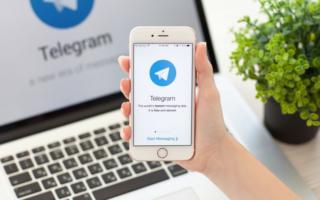 Telegram дайжести: Трамп ва Эрдўғон Telegram'да, федерациядан норози шахматчи, даромад декларациясидан қўрқмайдиган ҳокимлар