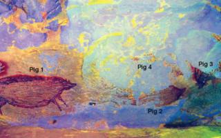 Индонезиядаги ғордан тошга чизилган 45 минг йиллик расм топилди — фото