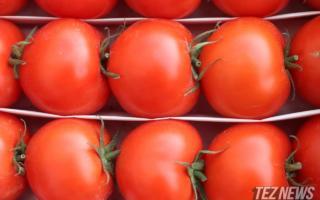 Январь ойида қайси ҳудуд кўпроқ помидор экспорт қилгани маълум бўлди