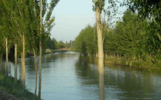 Катта Наманган каналидан мактаб ўқувчисининг жасади топилди